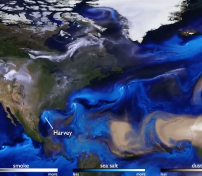 Watch as hurricanes form in that fascinating visualization
